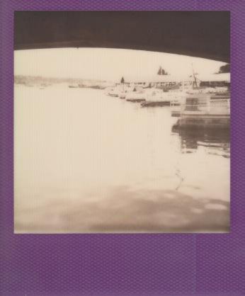 peeking under the ballard locks at boat houses